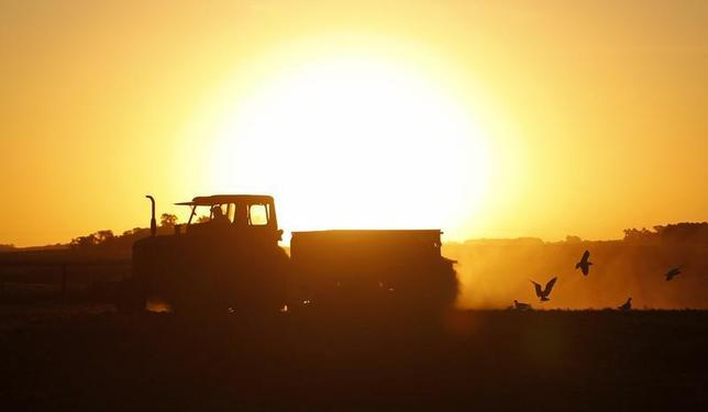 Farmer Rodolfo Picchi drives a tractor pulling a sowing machine to plant sorghum in the town of Estacion Islas in Buenos Aires province, November 24, 2012. REUTERS/Enrique Marcarian