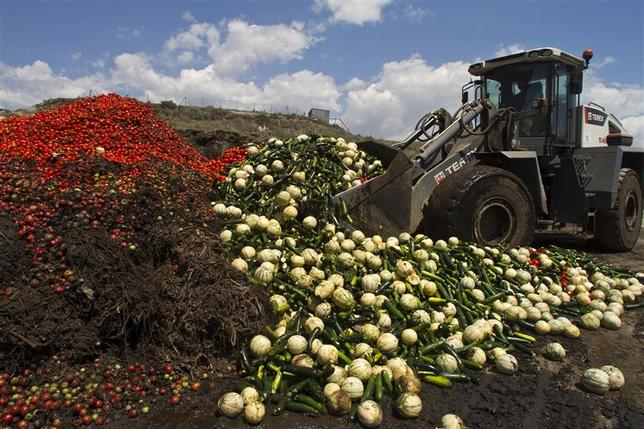 A digger unloads discarded vegetables into a pile of vegetable residue at the Albahida vegetable recycling plant in Nijar, in the southern Spanish region of Almeria, June 8, 2011. REUTERS/Francisco Bonilla
