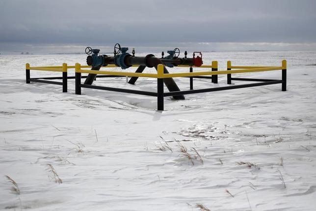A pipeline network is seen in a field outside of Williston, North Dakota March 11, 2013. REUTERS/Shannon Stapleton