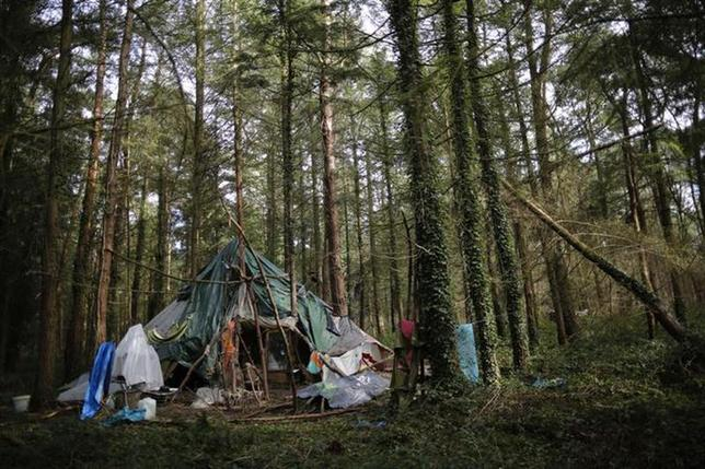 A make-shift shelter is seen in the Rohanne forest in the centre of the ZAD in Notre-Dame-des-Landes, western France, February 17, 2014. REUTERS/Stephane Mahe
