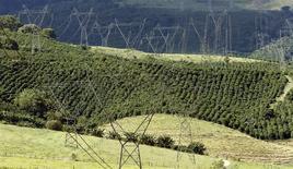 Unas torres de transmisión eléctricas junto a un cafetal en Santo Antonio do Jardim, Brasil, feb 6 2014. Brasil anunciará el jueves planes para reembolsar a los distribuidores de energía por los crecientes costos de electricidad, dijeron a Reuters dos fuentes del Gobierno, que busca reducir la incertidumbre del mercado sobre posibles déficits presupuestarios y aumentos de precios. REUTERS/Paulo Whitaker