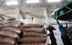 Trabalhadores carregam sacos com açúcar na usina de cana Paraíso, em Campos dos Goytacazes. A Copersucar, maior comercializadora global de açúcar e etanol, deve registrar um aumento de 11 por cento nas exportações do adoçante na safra 2013/14, para 6,8 milhões de toneladas, disse a companhia em comunicado nesta sexta-feira. 10/11/2010 REUTERS/Sergio Moraes