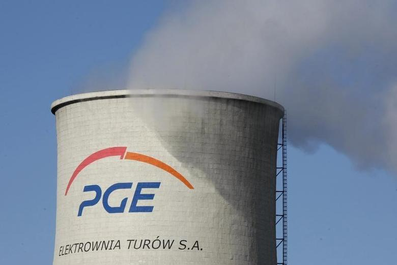 A PGE logo is seen on a cooling tower of the PGE Turow Power Station in Bogatynia, southwest Poland, March 19, 2012. REUTERS/Kacper Pempel
