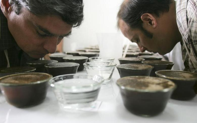 Coffee tasters smell coffee during a contest in Lima October 2, 2008. Coffee growers from throughout Peru met in the capital this week to compete in a nationwide coffee contest. REUTERS/Pilar Olivares