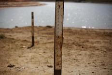 Indicadores do nível de água com marcas onde o nível normalmente ficava, na represa de Jaguari, em São Paulo. O Operador Nacional do Sistema elétrico (ONS) reduziu a previsão para o nível de armazenamento de água dos reservatórios das hidrelétricas do Sudeste/Centro-Oeste ao fim de março para 36,9 por cento, ante a expectativa da semana anterior de que chegassem a 38,2 por cento. 31/01/2014 REUTERS/Nacho Doce