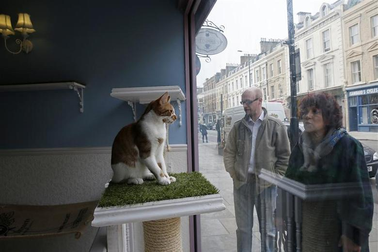 Pedestrians look at a cat in a window at the Lady Dinah's Cat Emporium in London March 28, 2014. REUTERS/Stefan Wermuth