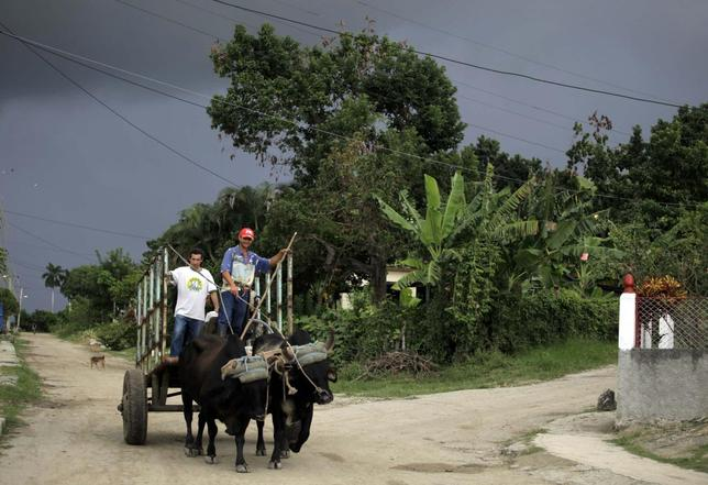 Farmers ride their oxen-pulled cart on the outskirts of Havana November 8, 2013. REUTERS/Desmond Boylan