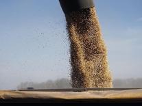 Soja sendo carregada num caminhão. Um carregamento de cerca de 60 mil toneladas de soja brasileira foi desviado para a África do Sul depois de compradores na China cancelarem o contrato original de compra, disseram comerciantes na Europa e na África do Sul nesta terça-feira. 24/04/2013 REUTERS/Enrique Marcarian