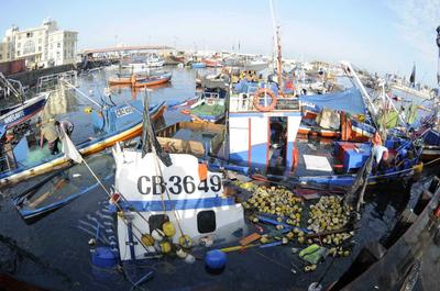 Chile assesses damage after massive quake, tsunami