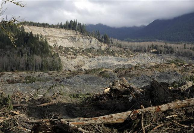The collapsed hillside and debris field from a massive mudslide that struck Oso is pictured near Darrington, Washington April 2, 2014. REUTERS/Jason Redmond