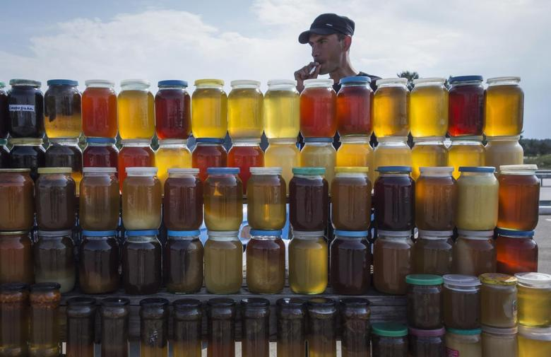 A vendor, who is also a beekeeper, sells honey at a road side market, some 170 kilometers (105 miles) north of Astana June 14, 2013. REUTERS/Shamil Zhumatov