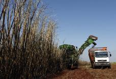 Trabalhadores colhem cana em uma fazenda em Maringá. A Companhia Nacional de Abastecimento (Conab) estimou nesta quinta-feira a safra de cana do centro-sul do Brasil 2014/15 em 613 milhões de toneladas, crescimento de 1,8 por cento na comparação com a temporada passada. 13/05/2011 REUTERS/Rodolfo Buhrer/La Imagem