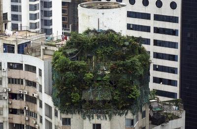 Bizarre buildings