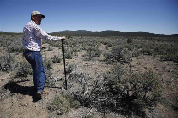 Cattle rancher Jeremy Hunt looks out over land, at a barbed wire fence in the Nephi Wash area outside Enterprise, Utah, April 10, 2014. REUTERS-Jim Urquhart