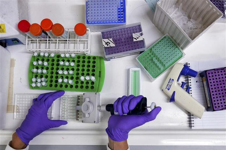 A scientist prepares protein samples for analysis in a lab at the Institute of Cancer Research in Sutton in this July 15, 2013 file photo. REUTERS/Stefan Wermuth/Files