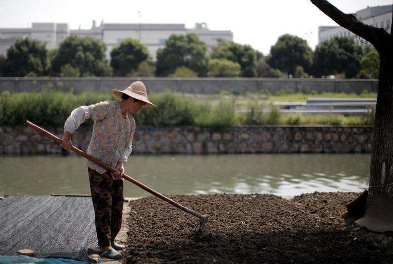 A woman works at a vegetable garden next a canal with polluted waters in Kunshan, Jiangsu province, September 5, 2011. REUTERS/Carlos Barria