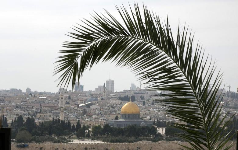 A palm frond is seen during a Palm Sunday procession on the Mount of Olives in Jerusalem April 13, 2014. REUTERS/Baz Ratner