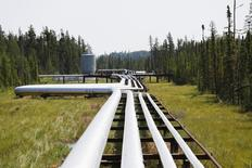 Oil, steam and natural gas pipelines run through the forest at the Cenovus Foster Creek SAGD oil sands operations near Cold Lake, Alberta, July 9, 2012. REUTERS/Todd Korol