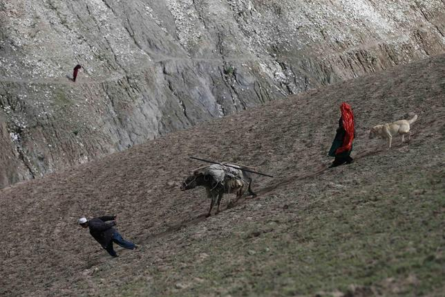 Displaced Afghans carry their aid on a donkey near the site of a landslide at the Argo district in Badakhshan province May 5, 2014. REUTERS/Mohammad Ismail