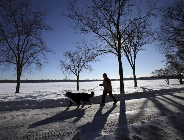 A woman walks her dog around a Minneapolis lake in sub-zero temperatures Minneapolis, January 8, 2014. REUTERS/Eric Miller