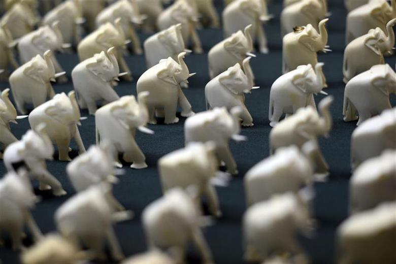 Seized elephant ivory charms are displayed during a news conference by the NY District Attorney to announce the guilty pleas of two men for selling over $2 million worth of illegal elephant ivory in New York, in this file photo taken July 12, 2012. REUTERS/Keith Bedford/Files