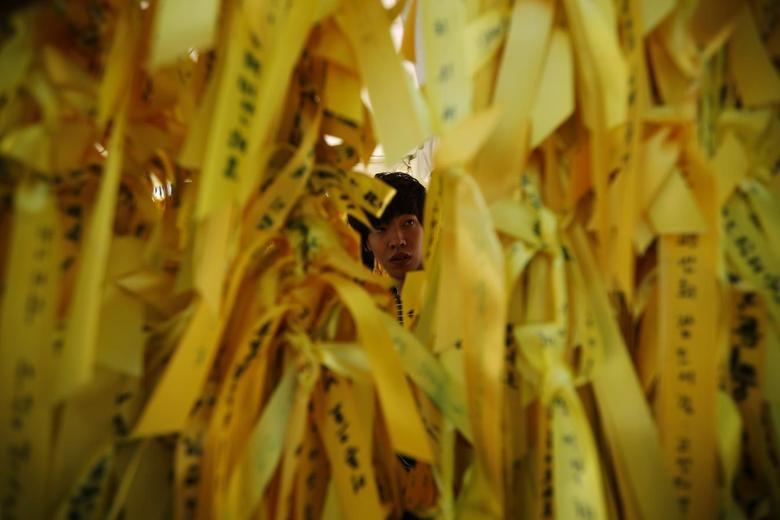 A man looks at yellow ribbons dedicated to dead and missing passengers onboard sunken passenger ship Sewol at Seoul City Hall Plaza May 15, 2014. REUTERS/Kim Hong-Ji