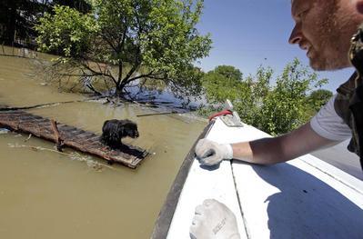 Floods affect over 1 million in Balkans, destruction...
