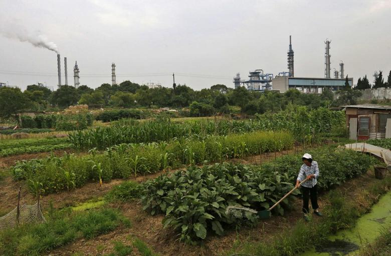 A farmer waters her vegetable fields near a petrochemical plant in Anqing, Anhui province May 30, 2014.  REUTERS/William Hong