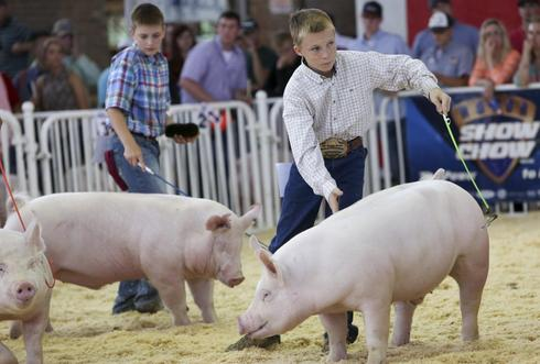 World Pork Expo 2014