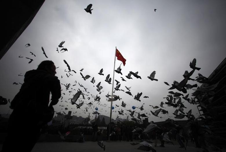 A man stands as pigeons fly during a ceremony marking the 75th anniversary of the Nanjing Massacre at the Nanjing Massacre Museum, Jiangsu province, December 13, 2012. REUTERS/Carlos Barria