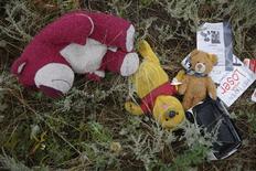 Личные вещи пассажиров лайнера Malaysia Airlines в районе его крушения близ села Грабово в Донецкой области 18 июля 2014 года. Прокуратура Нидерландов начала расследование крушения на Украине летевшего рейсом MH-17 из Амстердама лайнера Malaysia Airlines по статьям, предусматривающим ответственность за убийство, военные преступления и намеренное уничтожение самолёта. REUTERS/Maxim Zmeyev
