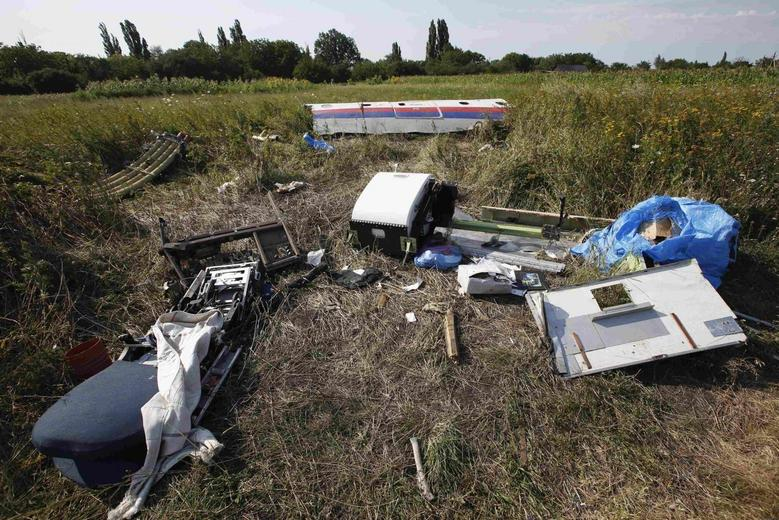 Pieces of the wreckage are seen at a crash site of the Malaysia Airlines Flight MH17 near the village of Petropavlivka (Petropavlovka), Donetsk region July 24, 2014. REUTERS/Maxim Zmeyev
