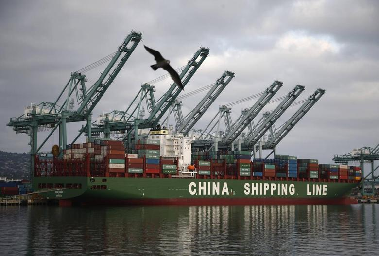 A bird flies past a container ship belonging to China Shipping Container Lines at the Port of Los Angeles in San Pedro, California August 20, 2014. REUTERS/Lucy Nicholson