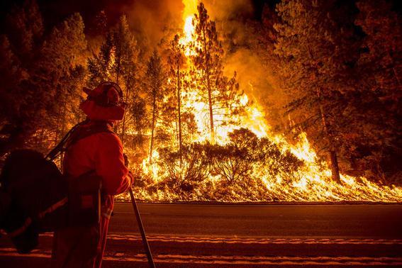 A firefighter battling the King Fire watches as a backfire burns along Highway 50 in Fresh Pond, California September 16, 2014.  REUTERS-Noah Berger