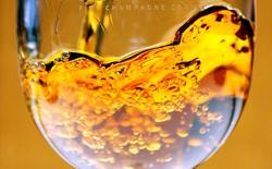 """Rémy Cointreau, propriétaire du cognac Rémy Martin, de la liqueur Cointreau ou du rhum Mount Gay, a bénéficié d'une reprise de ses ventes de cognac au troisième trimestre de son exercice décalé, marqué par un retour à la progression de ses expéditions à destination de la """"grande"""" Chine et par une bonne dynamique aux Etats-Unis. /Photo d'archives/REUTERS/Régis Duvignau"""