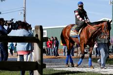 May 14, 2015; Baltimore, MD, USA; Kentucky Derby winner American Pharoah leaves the the Preakness Barn prior to a workout for the 140th Preakness Stakes at Pimlico Race Course. Mandatory Credit: Geoff Burke-USA TODAY Sports
