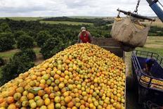Trabalhadores carregam laranjas em fazenda em Limeira. 13/01/2012 REUTERS/Paulo Whitaker