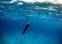 """Un turista en un área denominado """"Coral Gardens"""" en Lady Elliot Island, en Queensland, Australia, el 10 de junio de 2015. Con el sol australiano iluminando las aguas cristalinas de la """"Great Barrier Reef"""" (Gran Barrera de Coral), los delegados del programa Patrimonio de la Humanidad de la UNESCO hicieron esnórquel durante horas rodeados de mantarrayas, delfines y tiburones de arrecife. REUTERS/David Gray"""
