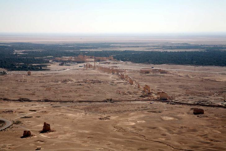A general view shows the historical city of Palmyra, October 28, 2007. REUTERS/Nour Fourat