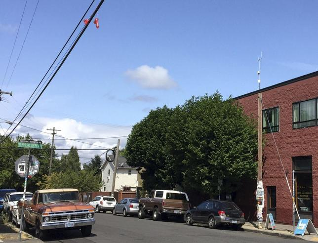 A pair of sex toys hang over power lines above a residential street in Portland, Oregon July 13, 2015. REUTERS/Courtney Sherwood