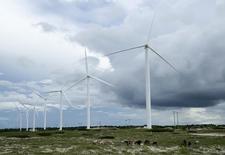 Gado pasta perto de turbinas eólicas em Paracuru, no Ceará. 24/04/2009 REUTERS/Stuart Grudgings