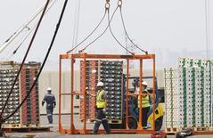 Unos trabajadores cargando cajas con frutas de exportación en el puerto de Valparaíso, Chile, ene 8, 2014. Las exportaciones de América Latina y el Caribe caerán un 14 por ciento este año por un desplome de los precios de las materias primas y una menor demanda por los productos de la región, dijo el martes de CEPAL.   REUTERS/Eliseo Fernandez