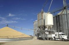 Caminhão é carregado com milho ao lado de uma pilha de soja no Estado de Minnesota 14/10/ 2015.  REUTERS/Karl Plume