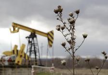 Una unidad de bombeo de petróleo de la compañía Rosneft, en la región de Krasnodar, Rusia, 21 de diciembre de 2014. Los productores de petróleo de Rusia han fortalecido su posición en Asia al proveer casi un 25 por ciento más de crudo este año, convirtiendo el equilibrio de poder en uno de los pocos aspectos positivos del mercado global y obstaculizando los esfuerzos de la OPEP por obtener clientes. REUTERS/Eduard Korniyenko