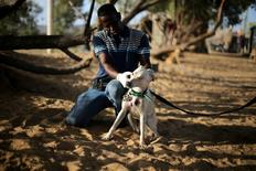 Palestinian man Saeed el-Aer gives a stray dog medical treatment at the organisation he helped set up, the Sulala Society for Training and Caring for Animals, in Zahra, south of Gaza city July 17, 2016. Picture taken July 17, 2016. REUTERS/Ibraheem Abu Mustafa
