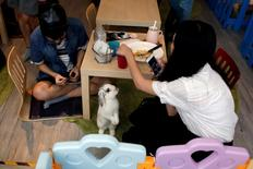 A rabbit looks at a customer at the first rabbit cafe in Hong Kong, China August 25, 2016.   REUTERS/Bobby Yip