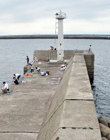 大阪で釣り人、相次ぎ落とされる