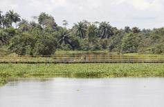 Un niño camina por un puente en las afueras de Bayelsa, la capital de Yenagoa, en la región del Delta del Niger en Nigeria. 8 de octubre de 2015. El grupo militante Vengadores del Delta del Níger dijo el sábado que perpetró un ataque contra el centro energético del sur de Nigeria, el primero desde que en agosto puso fin a las hostilidades para negociar con el Gobierno.  REUTERS/Akintunde Akinleye