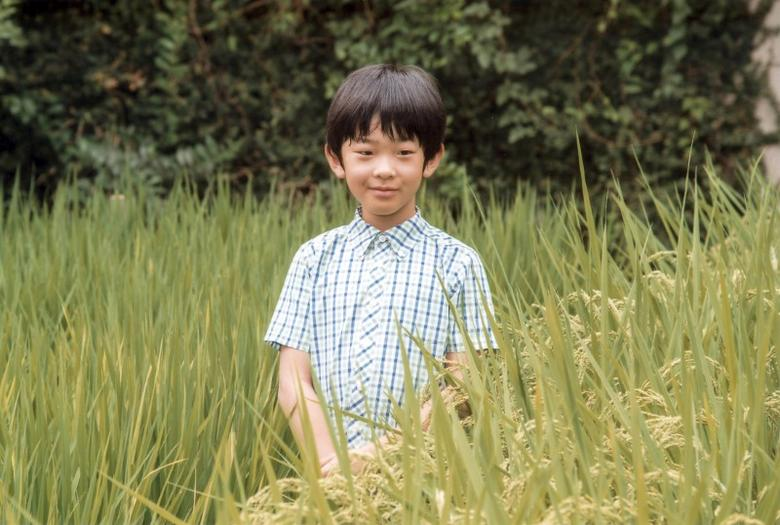 Japan's Prince Hisahito, the only son of Prince Akishino and Princess Kiko, poses at a rice field of the Akasaka Detached Palace in Tokyo, Japan  in this handout picture taken August 10, 2016, and provided by the Imperial Household Agency of Japan. Prince Hisahito turned 10 years old on September 6, 2016. Imperial Household Agency of Japan/Handout via Reuters