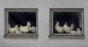 Aves vistas em fazenda em Munique, Alemanha.   03/03/2006           REUTERS/Alexandra Winkler